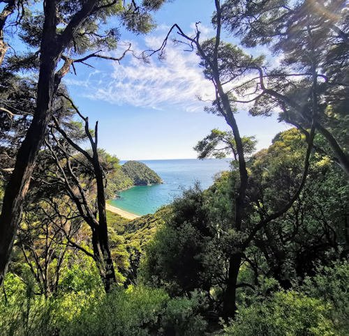 Mutton Cove - Totaranui